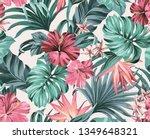 exotic tropical flowers in... | Shutterstock . vector #1349648321