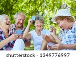 senior friends playing cards in ... | Shutterstock . vector #1349776997