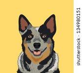 australian cattle dog  the...   Shutterstock .eps vector #134980151