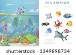 cartoon sea life colorful... | Shutterstock .eps vector #1349898734