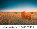 rural landscape field meadow... | Shutterstock . vector #1349907491