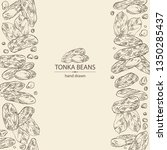 background with tonka beans ... | Shutterstock .eps vector #1350285437