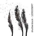black and white illustration of ... | Shutterstock .eps vector #135035897