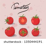 tomato collection. red tomato... | Shutterstock .eps vector #1350444191