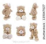 teddy bear set  2 of 3  | Shutterstock . vector #135047027