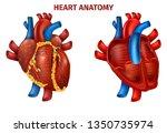 vector illustration of... | Shutterstock .eps vector #1350735974