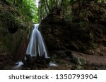 waterfall in the woods in pale  ... | Shutterstock . vector #1350793904