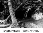 waterfall in the woods in pale  ... | Shutterstock . vector #1350793907