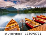 mountain lake in national park... | Shutterstock . vector #135090731