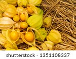 Small photo of Cape Gooseberry Physalis Peruviana or Ground cherries, winter cherry, Physalis minima, Pygmy ground cherry, Inca berry, Golden strawberry, Strawberry tomato, Husk tomato on straw background