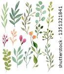 watercolor green leaves.   | Shutterstock . vector #1351321841