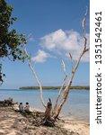 Small photo of Wala / Vanuatu - September 27, 2008: Local women on the beautiful beach of Wala Island