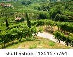 conegliano valdobbiadene region ...   Shutterstock . vector #1351575764