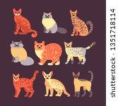 vector set of cats in a flat... | Shutterstock .eps vector #1351718114