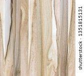 a fragment of a wooden panel... | Shutterstock . vector #1351815131