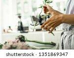 using scissors. professional... | Shutterstock . vector #1351869347