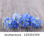 forgetmenot flowers on a wooden ... | Shutterstock . vector #135201554