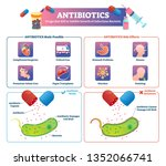 antibiotics vector illustration.... | Shutterstock .eps vector #1352066741