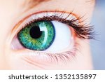 close up of an eye with beautiful green colour