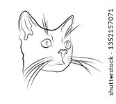 linear drawing of a cat   Shutterstock .eps vector #1352157071