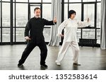 Couple of senior masters practicing qi qong taijiquan at studio. Breathing exercise and martial art moves, traditional chinese qi energy management gymnastics.