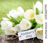tulips  label  mother's day   Shutterstock . vector #135260795