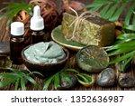 beauty  spa  body care  bath... | Shutterstock . vector #1352636987