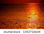 sunrise on the lagoon in the... | Shutterstock . vector #1352710634