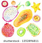 exotic fruits. papaya ... | Shutterstock . vector #1352896811