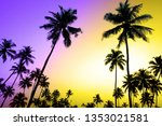 palms and sun  tropical sunset... | Shutterstock . vector #1353021581