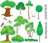 set of trees  bushes and birds... | Shutterstock .eps vector #135307079