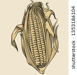vector hand drawn plant in... | Shutterstock .eps vector #1353186104