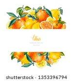 watercolor orange  lemon ...   Shutterstock . vector #1353396794