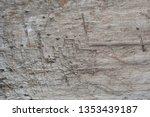 light brown scratched wooden... | Shutterstock . vector #1353439187