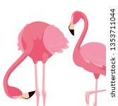 elegant flamingo birds couple | Shutterstock .eps vector #1353711044