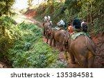 Elephant Trekking Through...