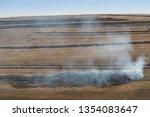 dry vegetation on fire ... | Shutterstock . vector #1354083647