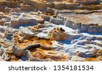 mammoth hot springs in the... | Shutterstock . vector #1354181534