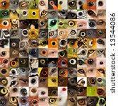 Patchwork Of 121 Animal And...
