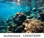 texture of stones  earth ... | Shutterstock . vector #1354474394