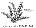 collection set of tropical... | Shutterstock .eps vector #1354511261