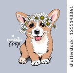 welsh corgi puppy with a... | Shutterstock .eps vector #1355143361
