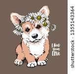 welsh corgi puppy with a... | Shutterstock .eps vector #1355143364