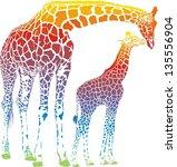 rainbow  vector illustration of ... | Shutterstock .eps vector #135556904