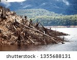 views of lake burbury  which is ... | Shutterstock . vector #1355688131