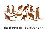 Kangaroo Family Vector...