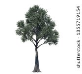single tree isolated on white... | Shutterstock . vector #1355719154