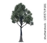 single tree isolated on white... | Shutterstock . vector #1355719181