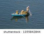 ismailia  egypt   november 5 ... | Shutterstock . vector #1355842844