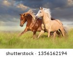 Red And Palomino Horse With...